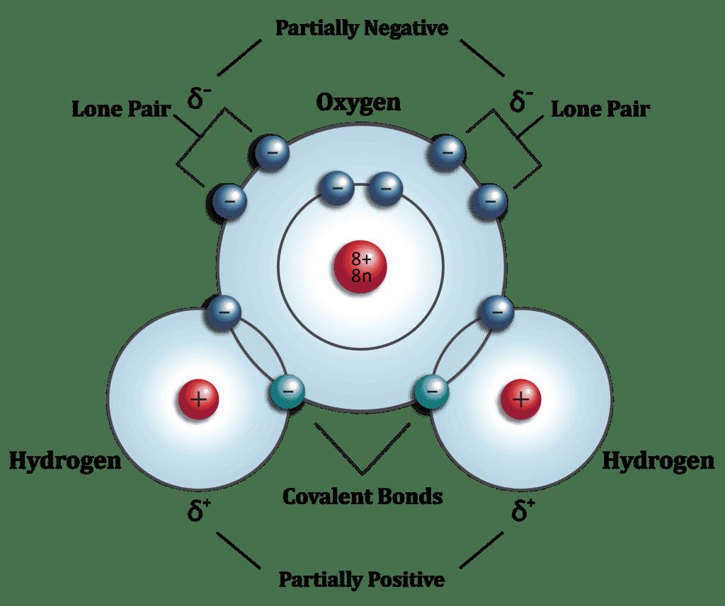 Covalent Bonds 01 01 1024x857 7159378