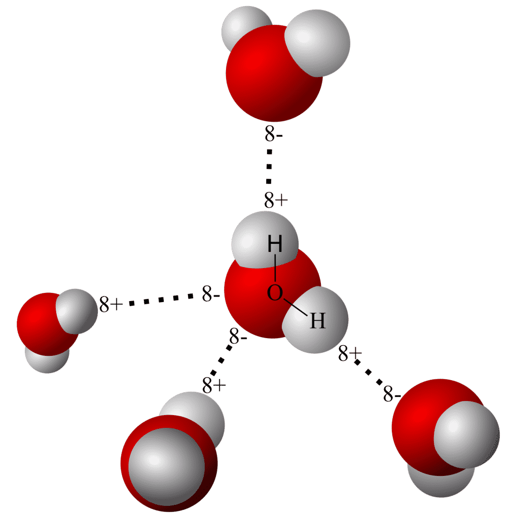 Hydrogen Bonds 1 1024x1016 6665833