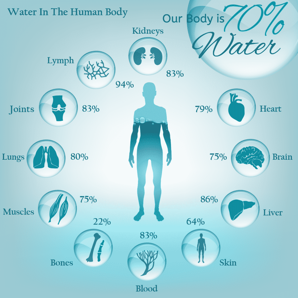 Water In Body 01 1024x1024 8277960